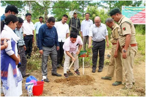 Forest and Environment minister planted tree
