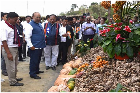 Chief minister N. Biren Singh inaugurates first ginger festival