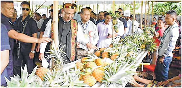 Khousabung pineapple festival CM assures food processing unit at Khousabung