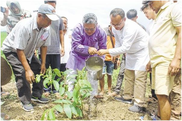 'Plant more trees, ensure their growth to beat climate change'
