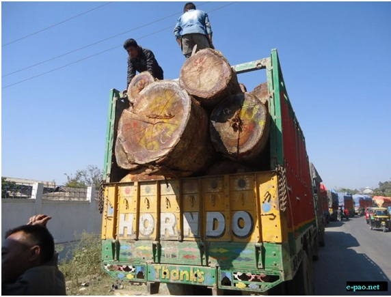 Illegal timber smuggling
